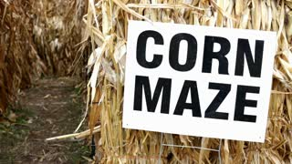 Corn Maze Sign at entrance