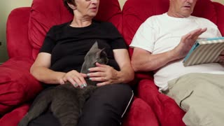 Couple playing with tablet on couch