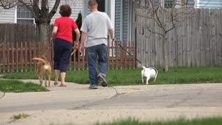 Couple walking their dogs through neighborhood 4k
