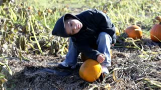 Cute boy sitting on pumpkin