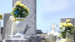 Daddy grave with flowers at graveyard in sunshine 4k