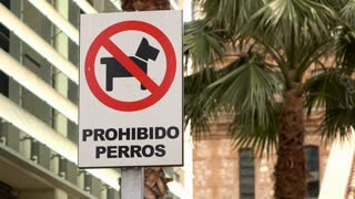 Dogs prohibited sign in Spain 4k