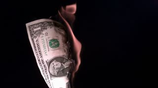 Dollar bill on fire slow motion