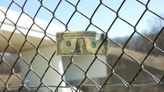 Dollar in fence blowing in wind