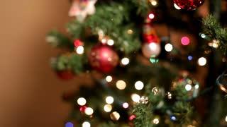 Dolly shot around Christmas Tree