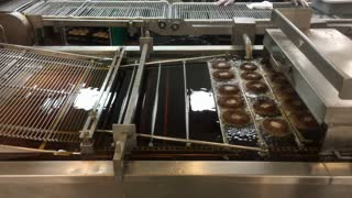 Donuts going through production line