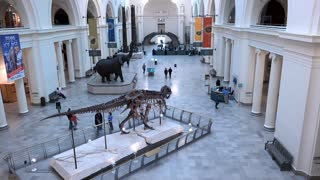 Entrance lobby of the Field Museum Chicago Illinois 4k