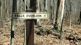 Falls overlook sign in forest
