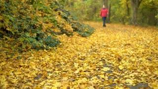 Female walking down path covered in fall leaves 4k