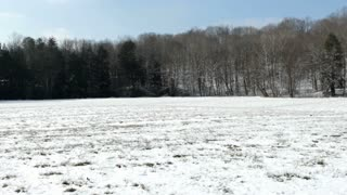 Field covered with snow in winter pan