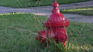 Fire Hydrant with feet walking by in back