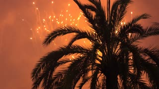 Fireworks exploding in background of palm tree on summer evening 4k