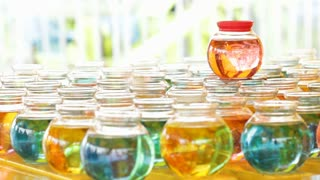 Fishbowl Carnival Game