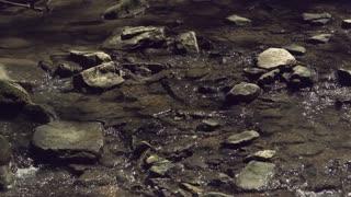 Flowing water in creek taking in super slow motion