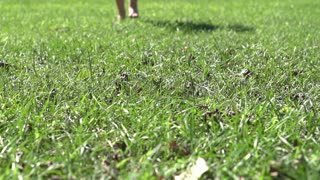 Following child feet running in grass