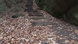 Forest path going through rock path tilt shot