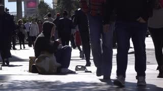 Girl and dog sitting on street sidewalk asking for money 4k
