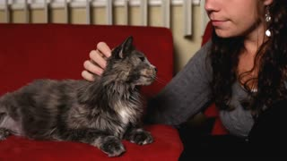 Girl petting Cat on red couch