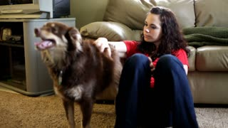 Girl petting dog against couch