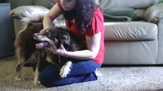 Girl petting dog in living room