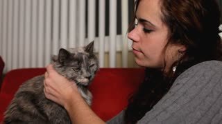 Girl petting gray cat