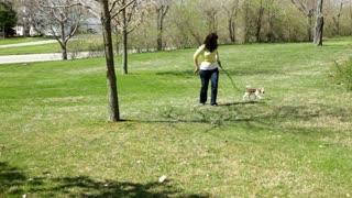 Girl walking dog in Backyard