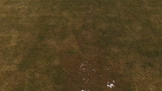 Goal of soccer field in winter aerial view 4k