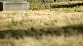 Grave with flowers and American flag tilt shot