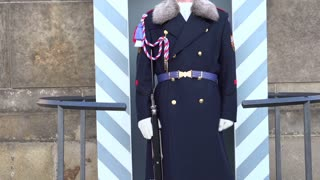 Guard standing motionless at Prague Castle