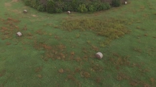 Hay rolls in field with forest reveal aerial shot