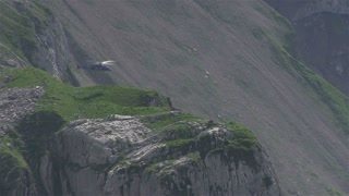 Helicopter hovering near side of mountain
