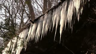 Icicles dripping water from above