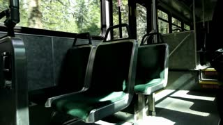 Inside of bus driving through woods