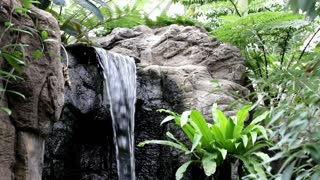 Jungle Environment with Waterfall