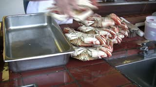 Loading Crabs into Metal Container