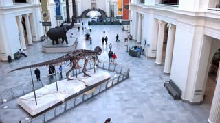 Main foyer of the Field Museum in Chicago Illinois 4k