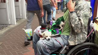 Man in wheelchair with dogs on his lap
