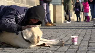 Man on streets showing love for his pet dog