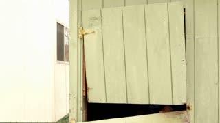 Man opens barn door and looks around