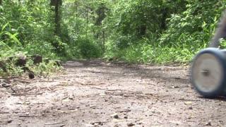 Man Pushing Stroller through Path