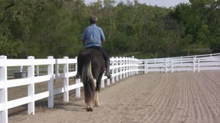 Man riding horse in fenced area
