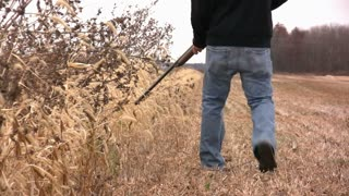 Man walking with Gun through Field