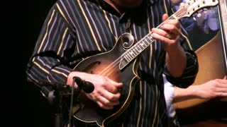 Mandolin Played at Concert