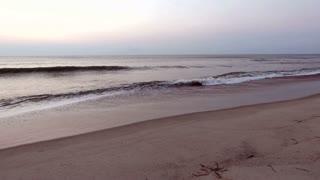 Morning waves on beach shore