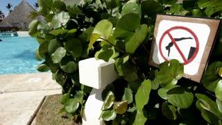 No diving sign at swimming pool