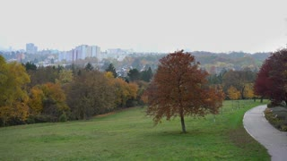 Park with city in background 4k