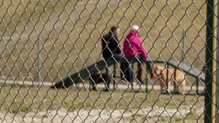 People at dog park behind fence