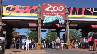 People entering Columbus Zoo and Aquarium 4k