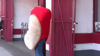Person in Hot Dog Costume