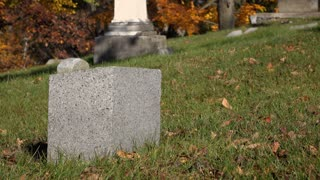 Pink flowers laid on grave head stone 4k